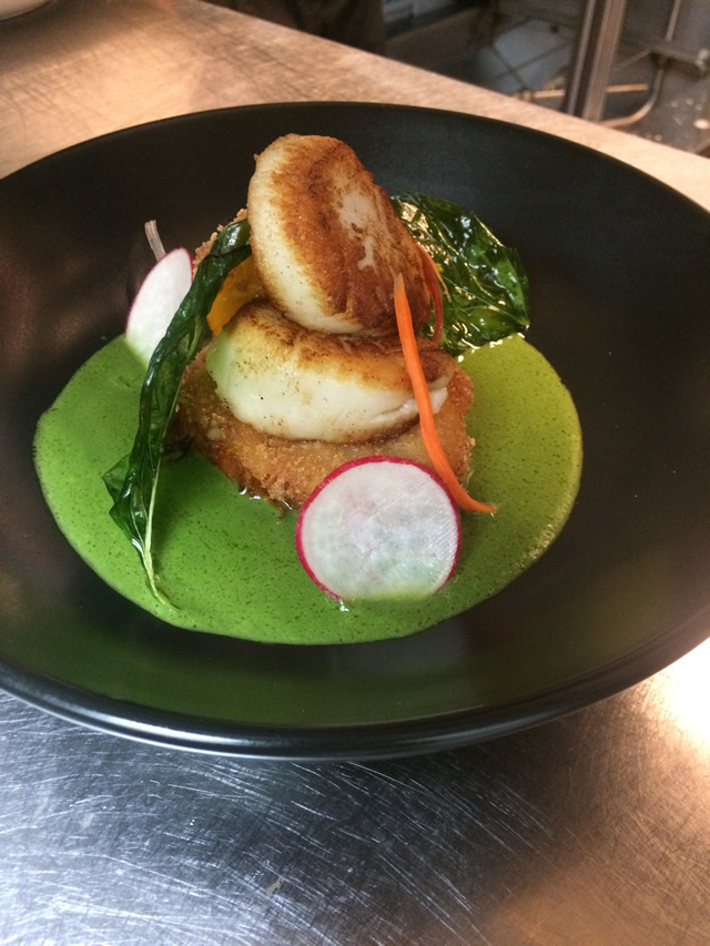 Scallop in Nettle Sauce - Dockside Bistro in Olympia, WA